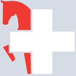 Kooperationspartner SFRV – Schweizer Freizeitreitverband