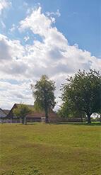 IPTh Standort Zuzgen